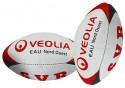 Mini ballon de rugby Picot
